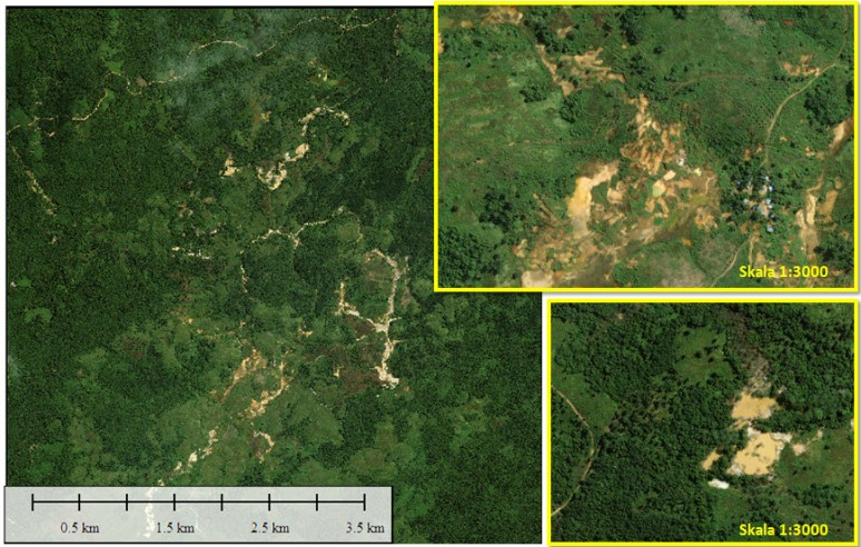 24. Udui, Kalimantan Tengah